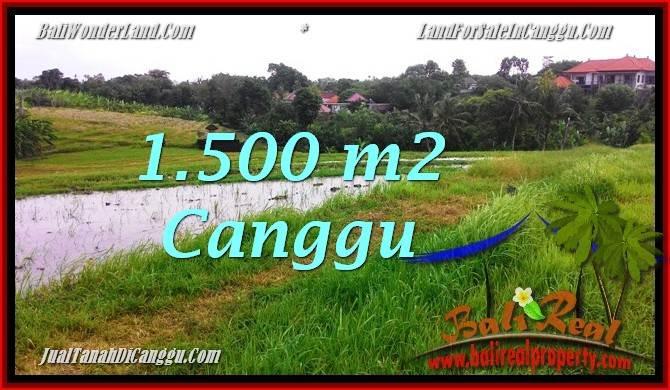 TANAH di CANGGU DIJUAL 1,500 m2 di Canggu Batu Bolong