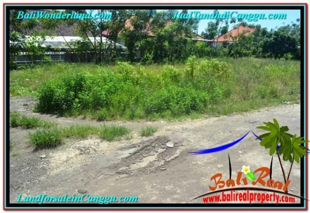 DIJUAL TANAH MURAH di CANGGU Untuk INVESTASI TJCG203