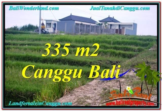TANAH di CANGGU BALI DIJUAL 335 m2 di Canggu Umalas