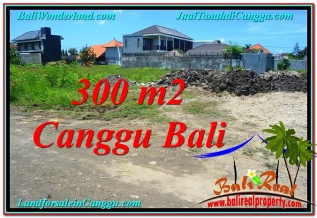TANAH di CANGGU BALI DIJUAL TJCG203