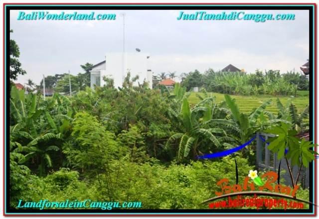TANAH DIJUAL MURAH di CANGGU BALI 6 Are di Canggu Brawa