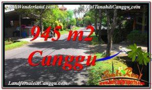 TANAH MURAH di CANGGU JUAL 9.45 Are Lingkungan Villa