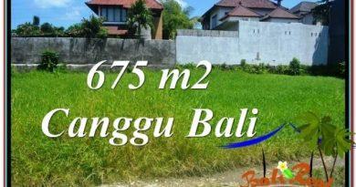 JUAL MURAH TANAH di CANGGU 675 m2 di Canggu Brawa