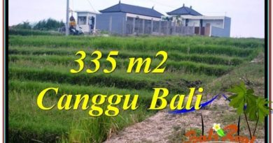 TANAH DIJUAL MURAH di CANGGU BALI Untuk INVESTASI TJCG204