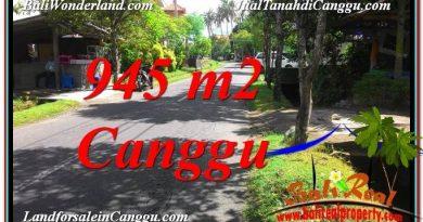 INVESTASI PROPERTI, TANAH DIJUAL di CANGGU TJCG210