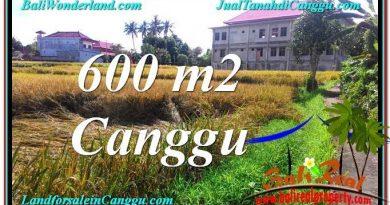 INVESTASI PROPERTI, TANAH DIJUAL di CANGGU TJCG211