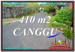 JUAL TANAH MURAH di CANGGU BALI 4.1 Are Lingkungan Villa