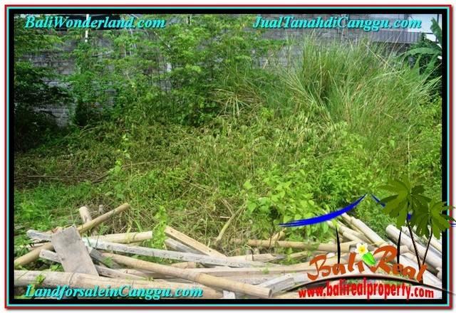 INVESTASI PROPERTY, JUAL MURAH TANAH di CANGGU BALI TJCG216