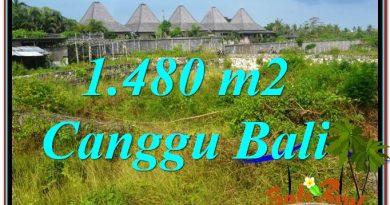 TANAH MURAH di CANGGU Untuk INVESTASI TJCG212