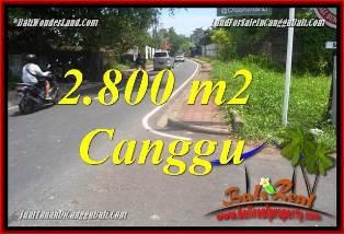 TANAH DIJUAL MURAH di CANGGU 28 Are di CANGGU BATU BOLONG