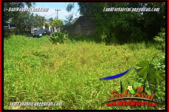 TANAH DIJUAL MURAH di CANGGU 2,800 m2 di CANGGU BATU BOLONG