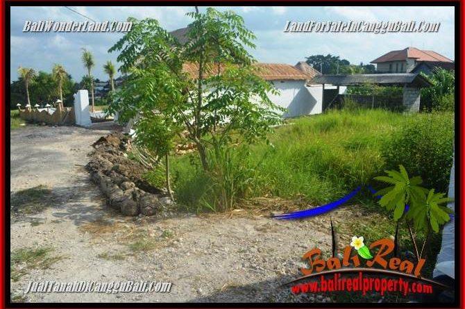 TANAH DIJUAL di CANGGU BALI Untuk INVESTASI TJCG229
