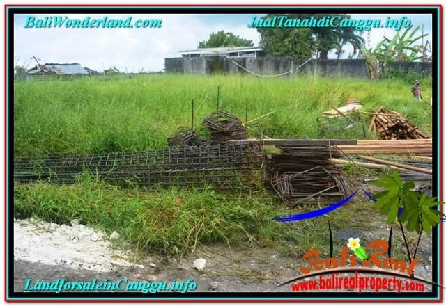 TANAH MURAH DIJUAL di CANGGU BALI 900 m2 di Canggu Batu Bolong
